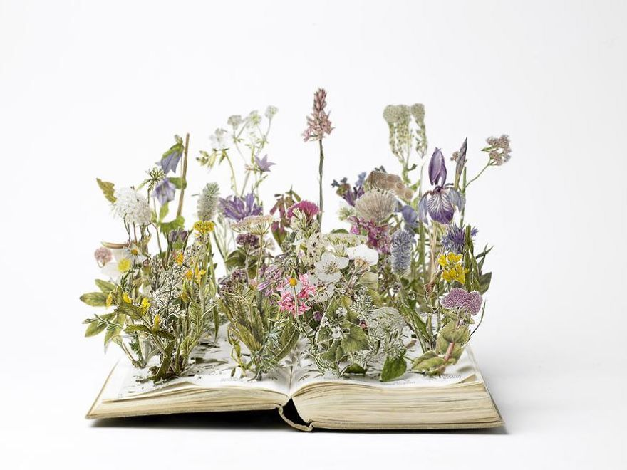 book-sculpture-cutting-paper-art-herb-garden
