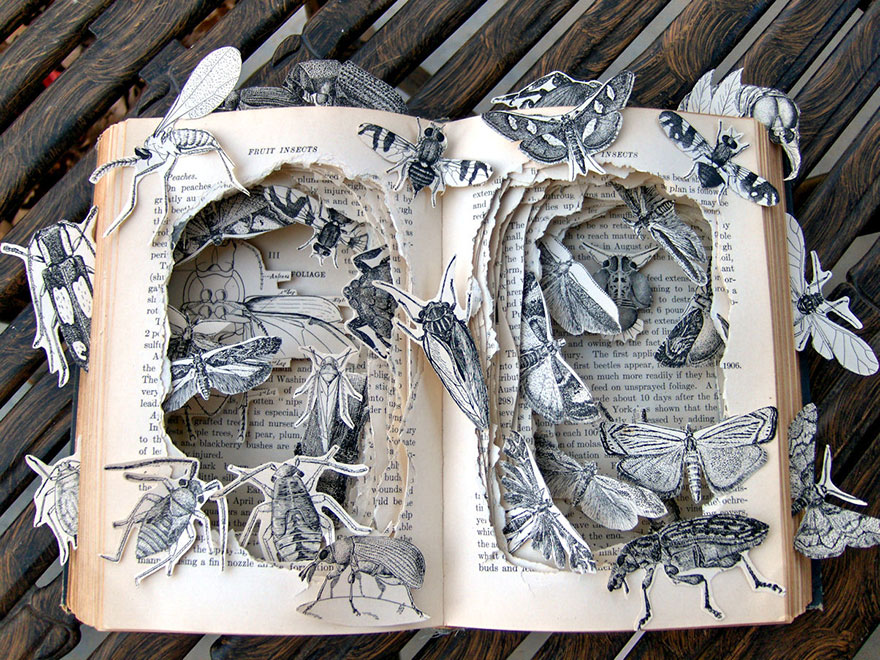 book-sculpture-kelly-campbell__880