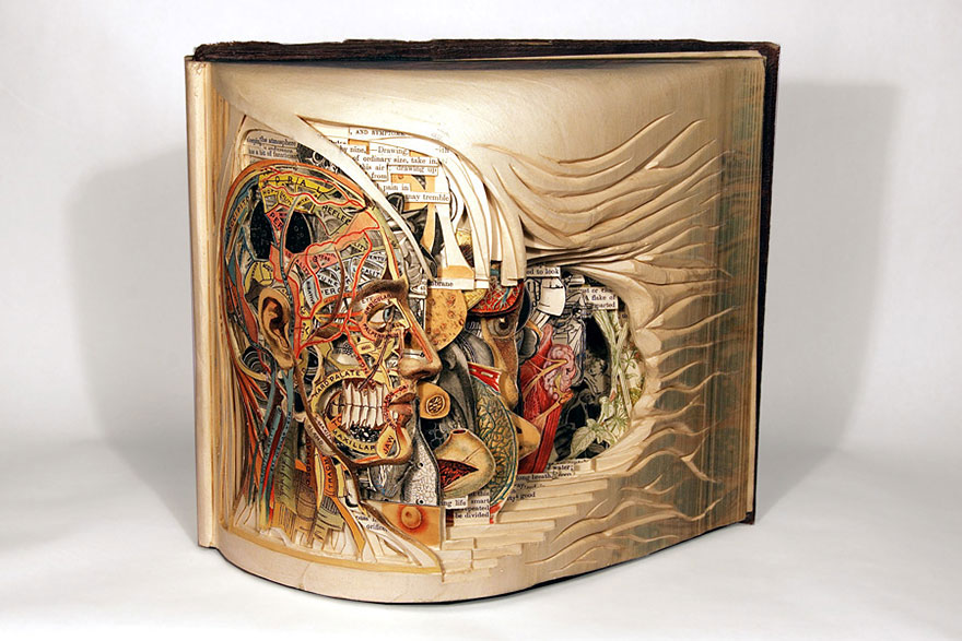paper-book-sculpture-art-brian-dettmer