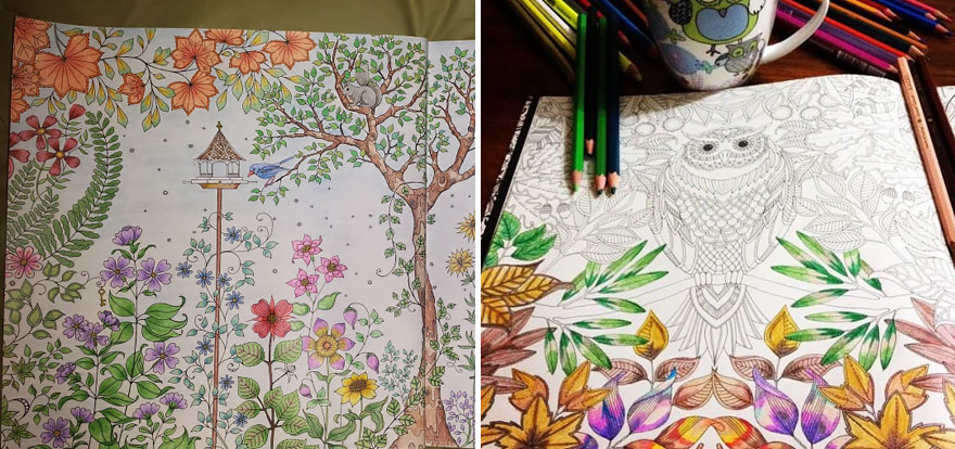 coloring-books-for-adults-johanna-basford-1
