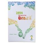 Бразилия 2014